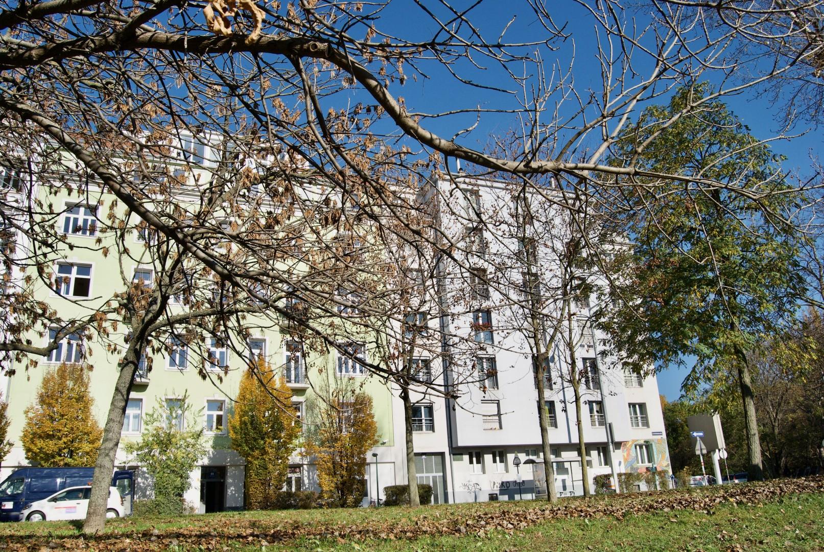 Wohntraum in beliebter Nachbarschaft nahe des Donaukanals